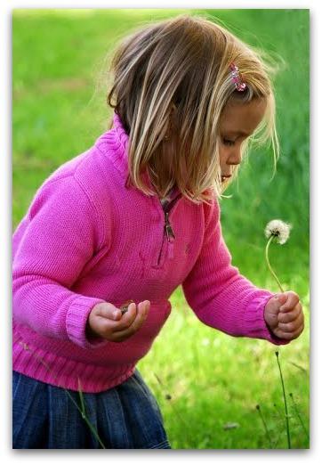 Cortando flores.jpg